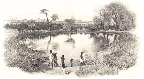 Une des mares aux portes de Tombouctou - 1896